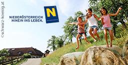 Badespaß in Niederösterreich
